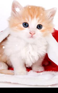 Christmas Cat Live Wallpaper Poster Apk Screenshot