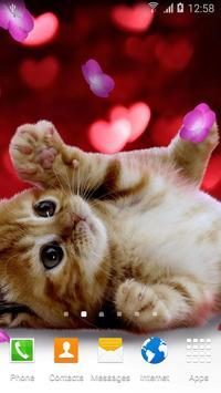 Animals Cute Live Wallpaper poster