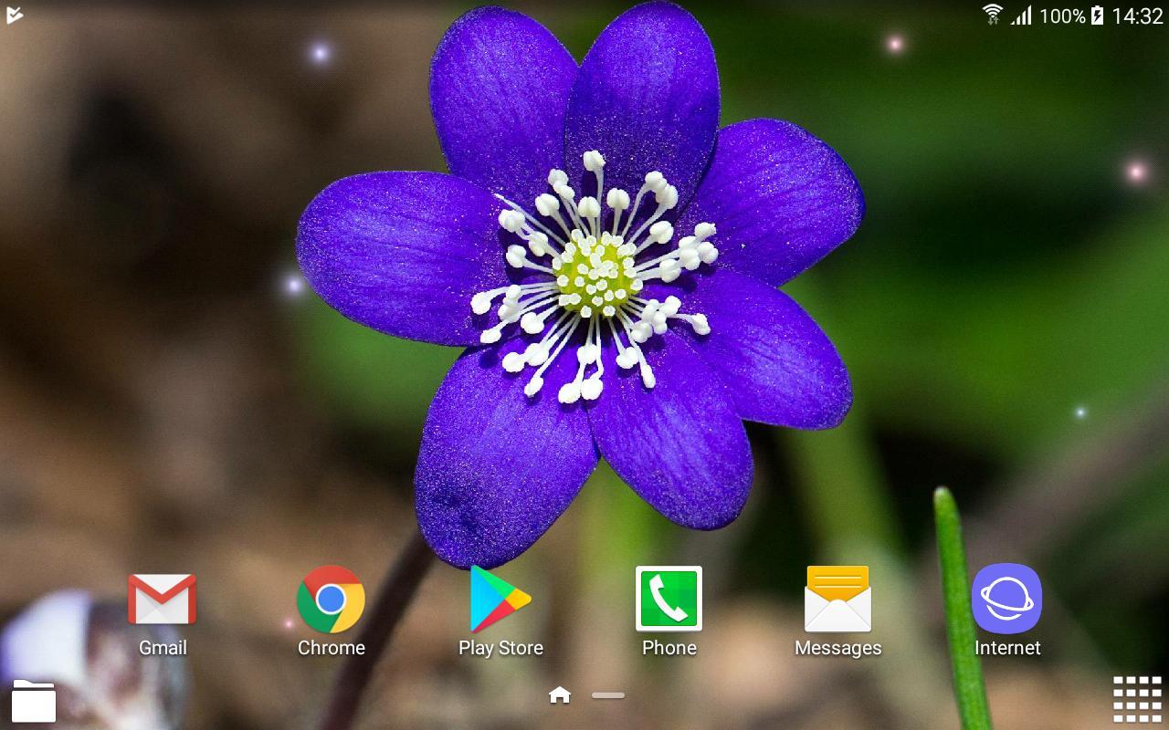 Beautiful Spring Flowers Live Wallpaper Para Android Apk Baixar