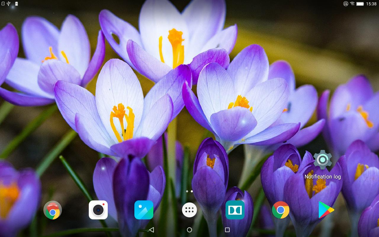 Beautiful spring flowers live wallpaper cho android ti v apk beautiful spring flowers live wallpaper nh chp mn hnh 8 izmirmasajfo