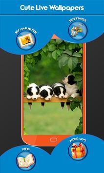 Cute Live Wallpapers apk screenshot