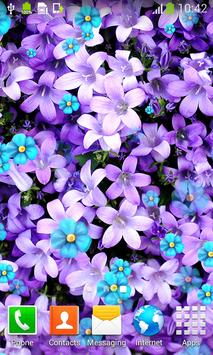 Flower Season Live Wallpapers apk screenshot