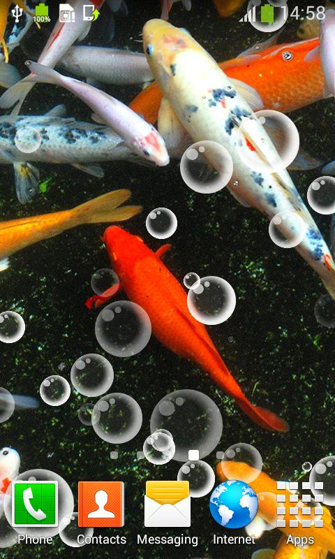 Koi Fish Live Wallpapers For Android Apk Download