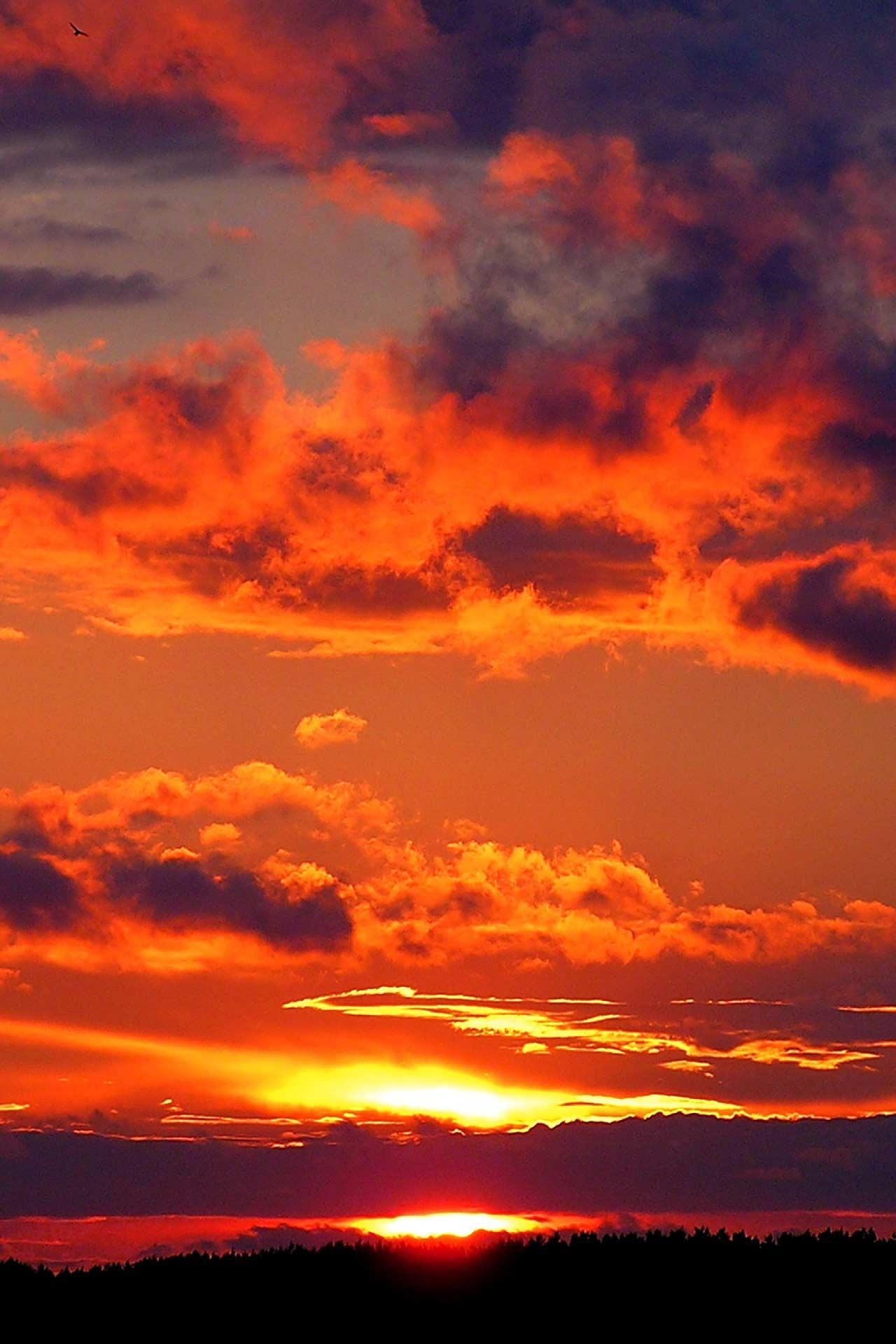Sunset Live Wallpaper for Android - APK Download