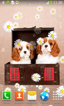 Cute Puppies Live Wallpapers screenshot 5
