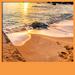fondos de pantalla vivo playa