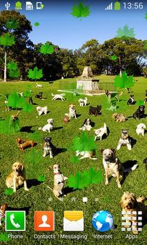 Dogs Live Wallpapers apk screenshot