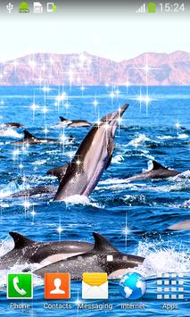 Dolphins Live Wallpapers apk screenshot
