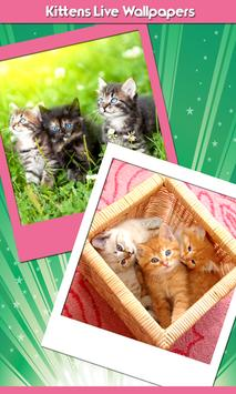 Kittens Live Wallpapers poster