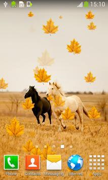 Horses Live Wallpapers apk screenshot