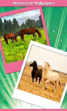 Horses Live Wallpapers poster