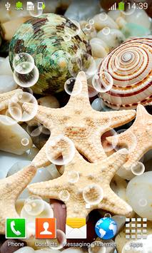 Seashell Live Wallpapers apk screenshot