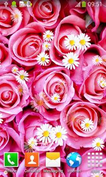 Pink Roses Live Wallpapers screenshot 3