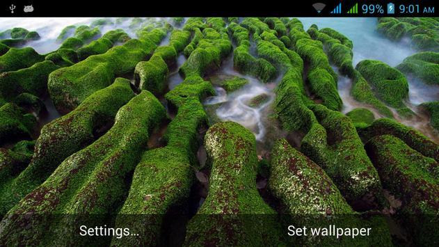 Nature Live Images apk screenshot
