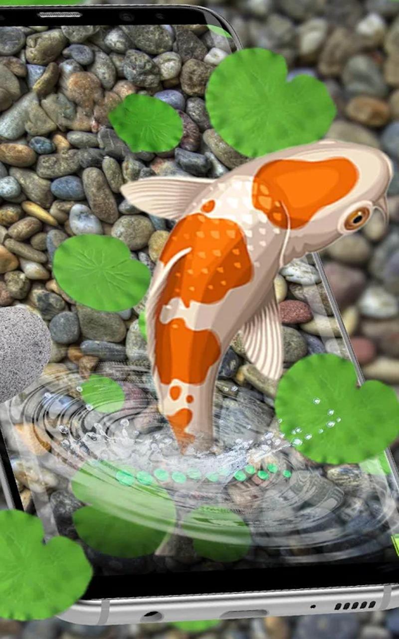 Ikan Hidup Wallpaper 3d Hidup Koi Ikan Belakang For Android
