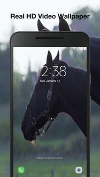 Horses Live Wallpaper screenshot 4