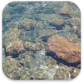 Real Water Live Wallpaper icon