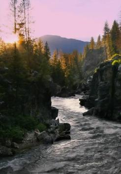 The nature and mood apk screenshot