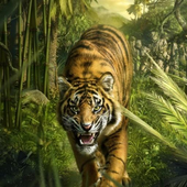Tigers part 3 icon