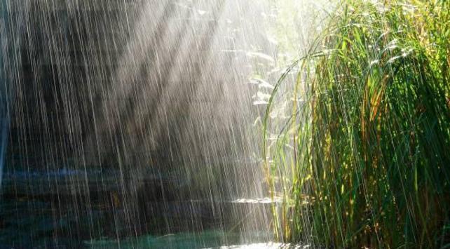 Rainy day apk screenshot