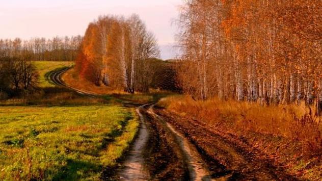 Autumn screenshot 6