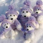 ikon Bears in winter