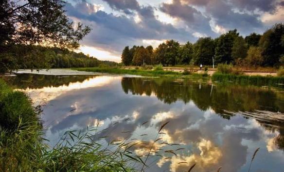 Water and nature apk screenshot