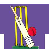 Cric Score icon