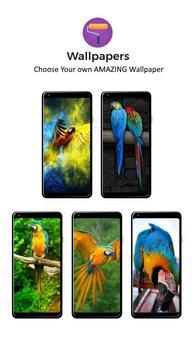 Macaw Parrot Lock Screen screenshot 4