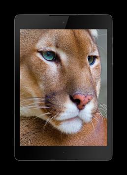Puma 🐾 Lock Screen Password screenshot 13