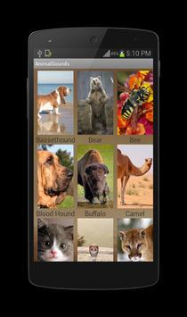 Animal Sounds screenshot 1
