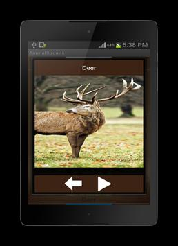 Animal Sounds screenshot 5