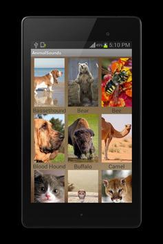 Animal Sounds screenshot 7