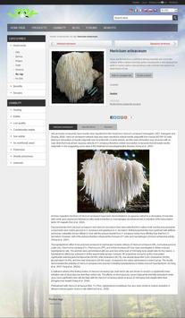 Mushrooms Look apk screenshot