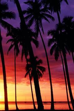 Lombok Sunset Wallpaper screenshot 6