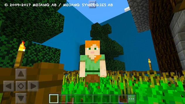 Try Find Button. MCPE map poster