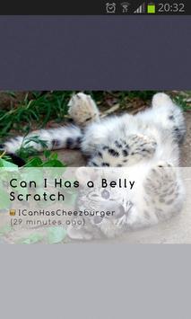 Cute Addict - Animal pictures apk screenshot