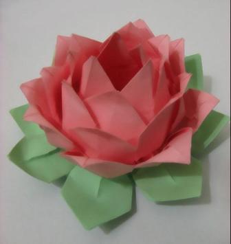 Lotus Origami Tutorials screenshot 5