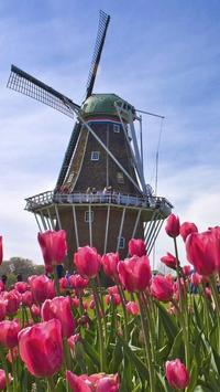 Holland Wallpapers HD screenshot 6