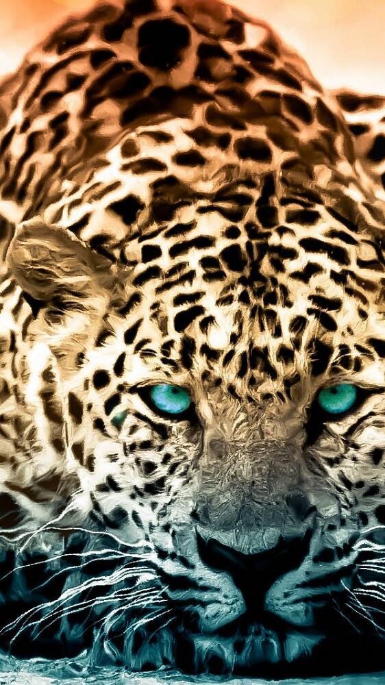 ... Jaguar Wallpapers HD screenshot 2 ...