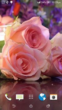 Pink Rose Live Wallpaper apk screenshot