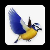 Bird Flight (Unreleased) icon