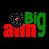 Big Aim Custom. icon
