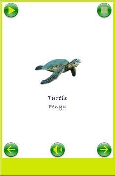 Bahasa Inggris Untuk Anak screenshot 8