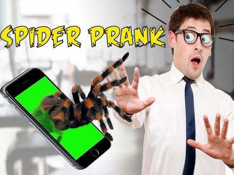 Spider 3D AR Prank Halloween screenshot 4