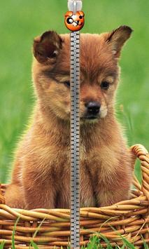 Puppy Zipper Lock poster