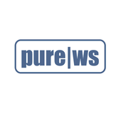 Pure Web Synergy Emulator icon