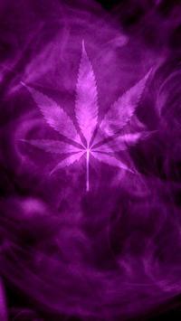 Marijuana Live Wallpaper - Purple Haze FREE poster