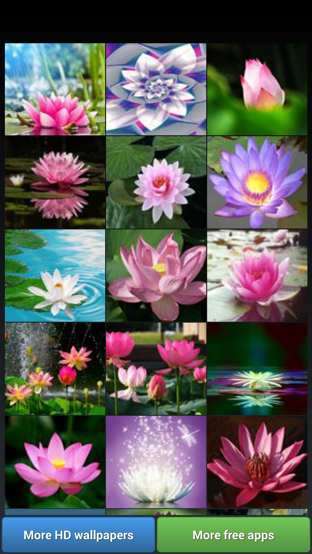 Lotus Flower Wallpapers For Android Apk Download