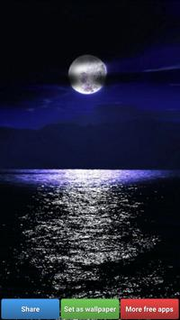 Beautiful Moon HD Wallpapers screenshot 4